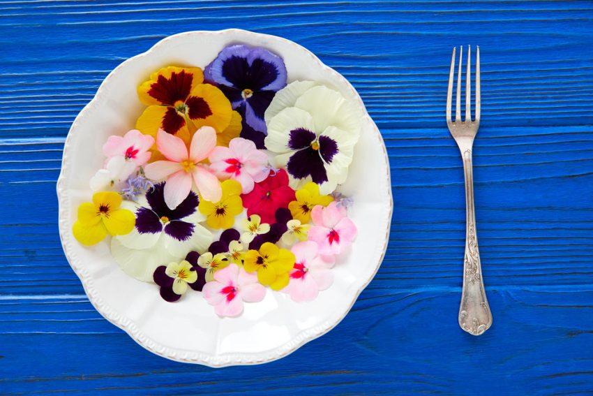 Assiette de fleurs comestibles
